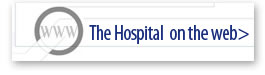 The Hospital on the web