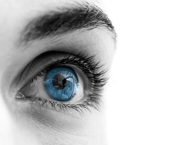 Oculoplastia hospital universitario cruces for Paredes orbitarias